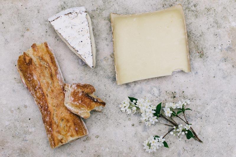El maravilloso mundo del queso